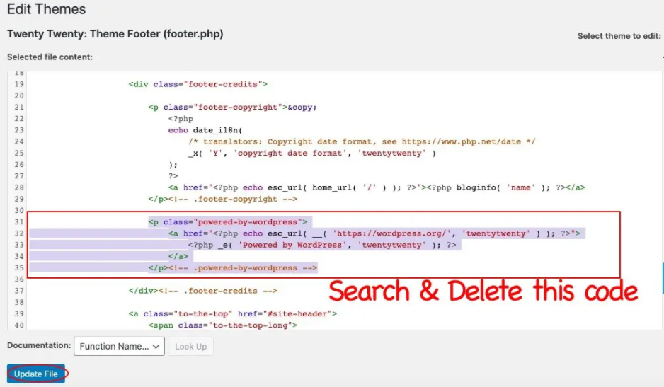 delete existing footer code